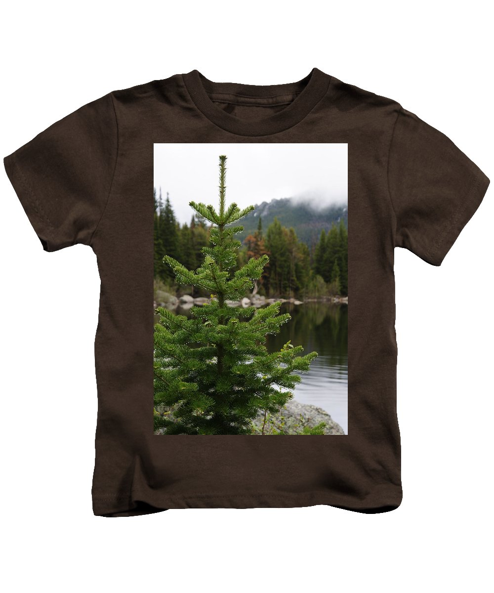 Pine Tree Kids T-Shirt featuring the photograph Pine Tree And Rain Drops by Alan Hutchins