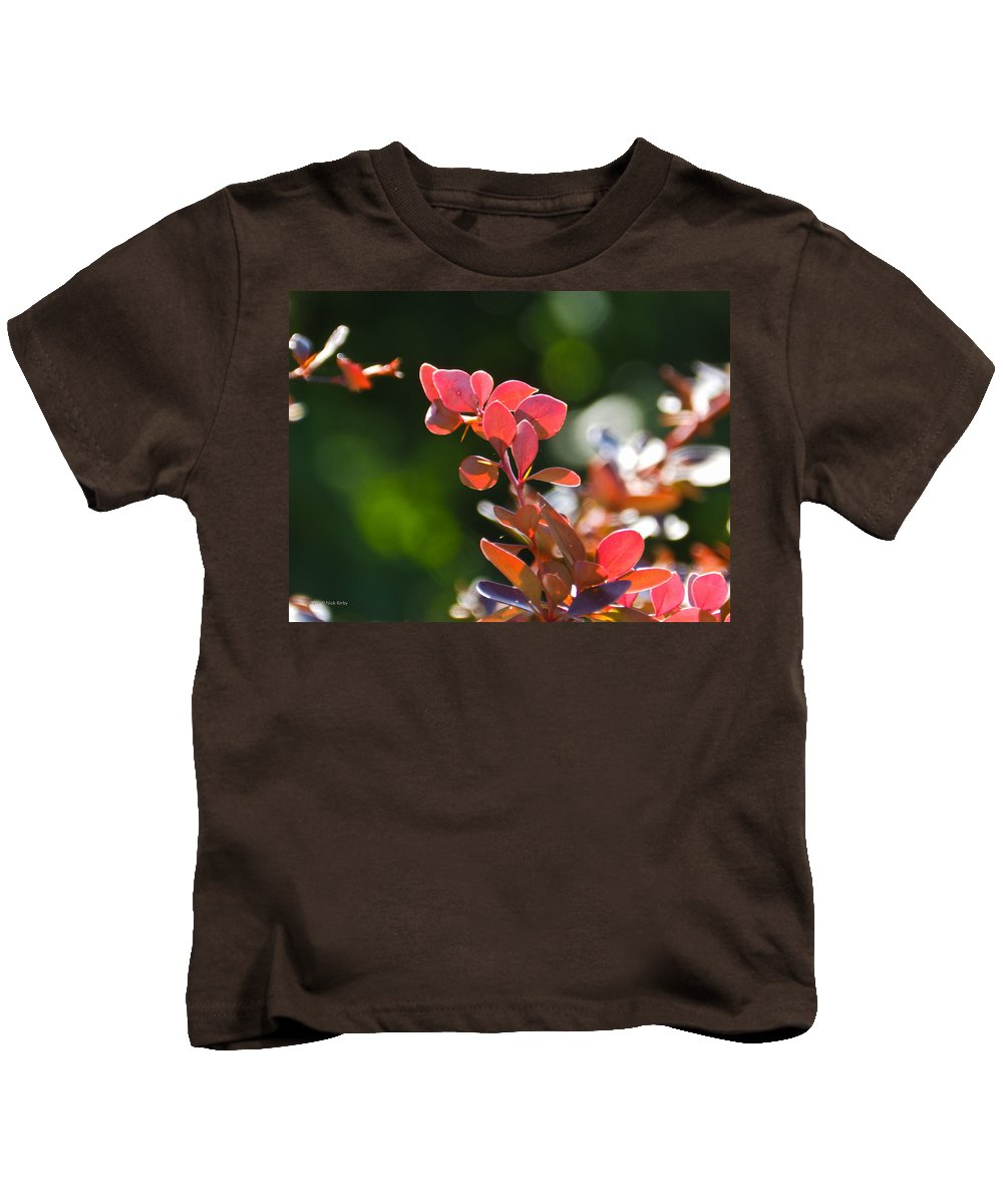 Barberry Kids T-Shirt featuring the photograph Red Barberry by Nick Kirby