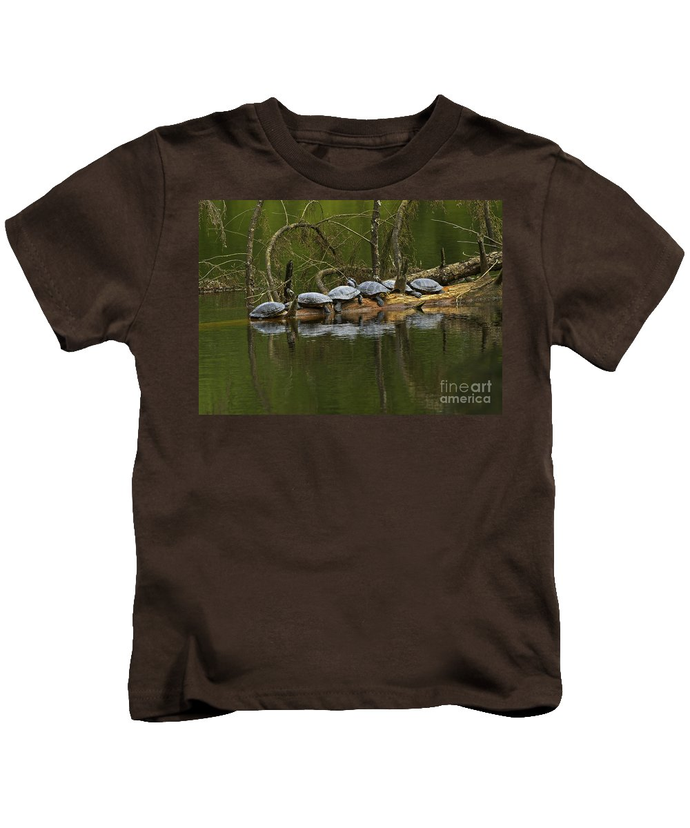 Red-eared Slider Turtles Kids T-Shirt featuring the photograph Red-eared Slider Turtles by Sharon Talson