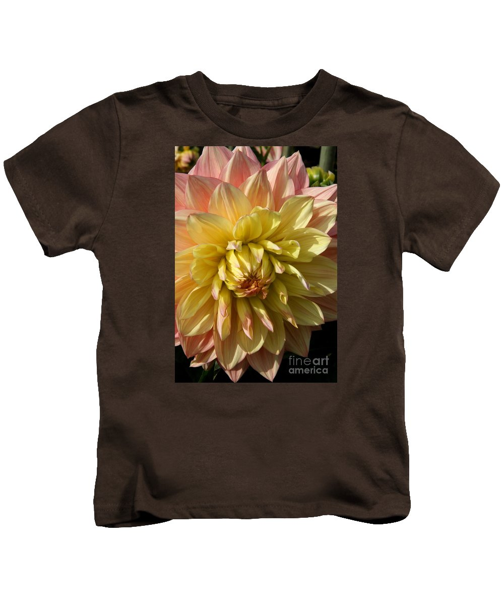 Dahlia Kids T-Shirt featuring the photograph Shy Dahlia Beauty by Christiane Schulze Art And Photography