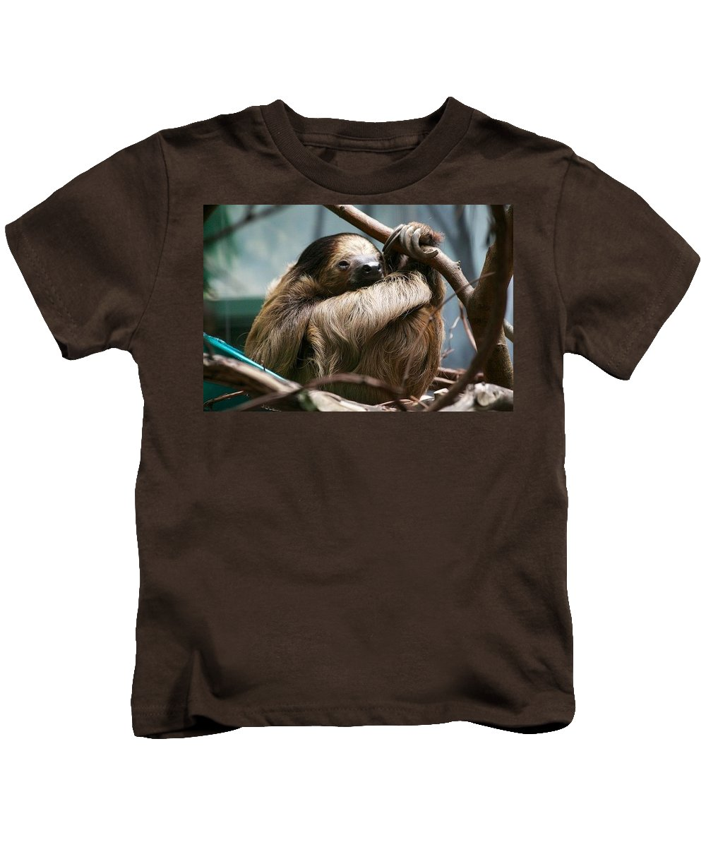 Sloth Kids T-Shirt featuring the photograph Sloth by Allan Morrison