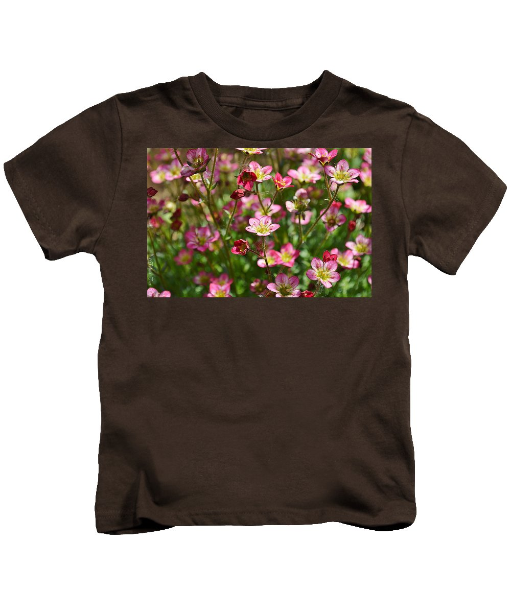 Pink Flowers Kids T-Shirt featuring the photograph Spring In Pink by Felicia Tica