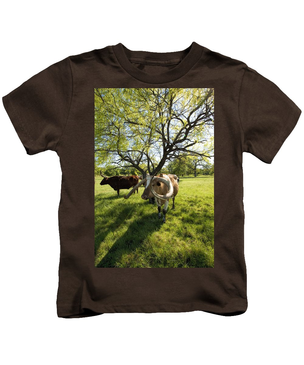 Longhorns Kids T-Shirt featuring the photograph Stunning Texas Longhorns by Kathy Clark