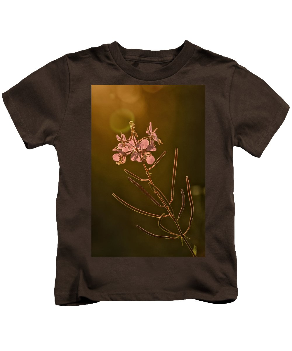 Purple Loosestrife Kids T-Shirt featuring the photograph Sundown by Susan Capuano