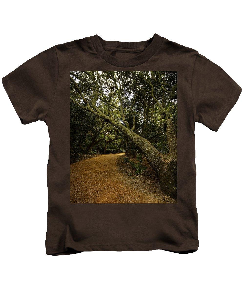 By Chris Modlin Kids T-Shirt featuring the photograph The Path by Chris Modlin