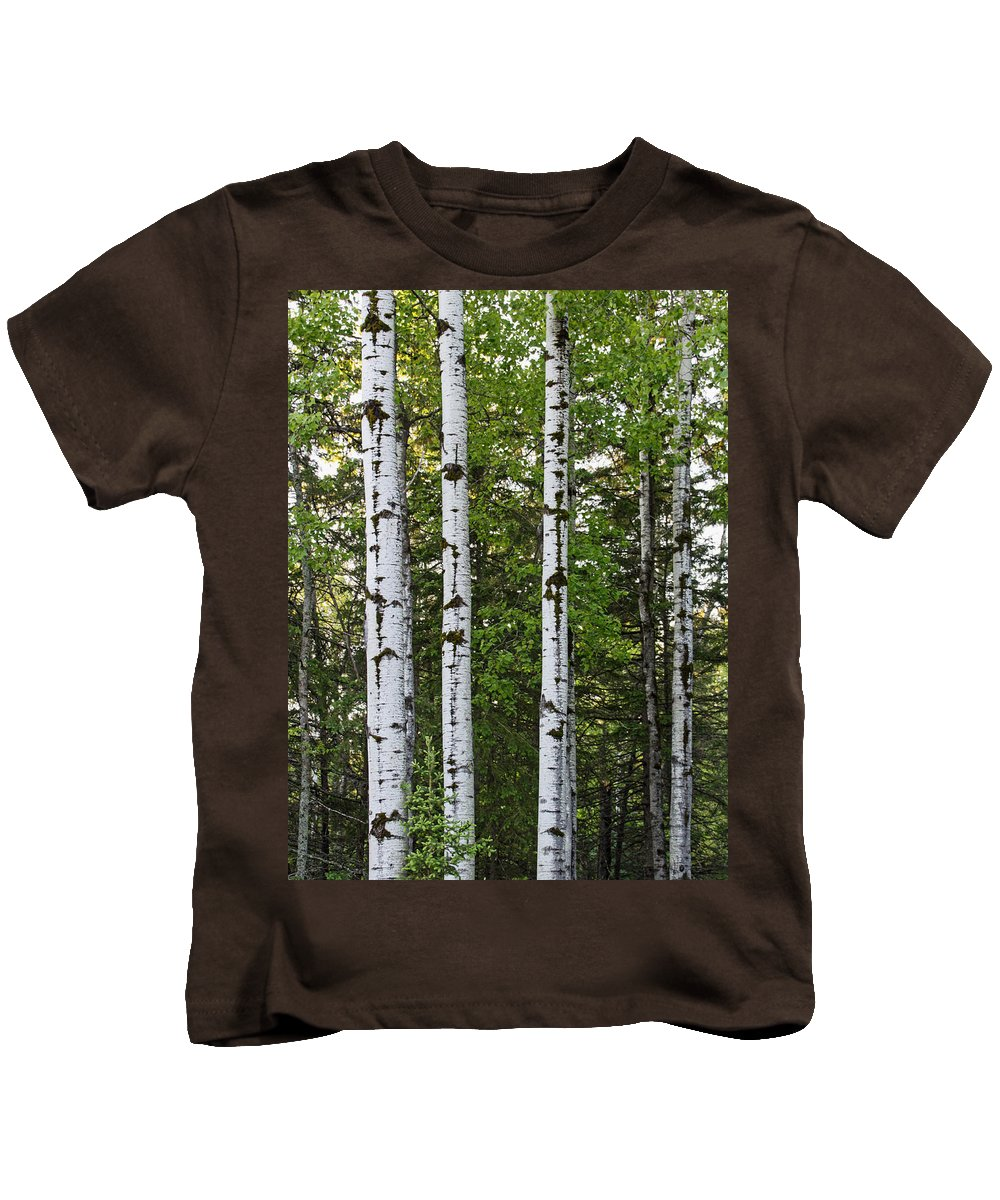 Minnesota Kids T-Shirt featuring the photograph Three Trees by Angie Schutt