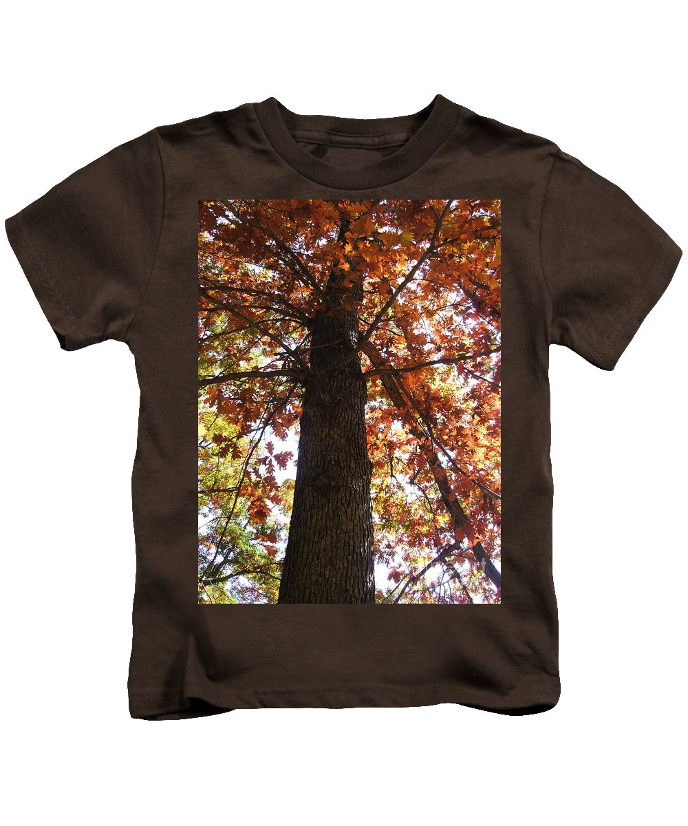 Tree Kids T-Shirt featuring the photograph Up Fall by Minding My Visions by Adri and Ray