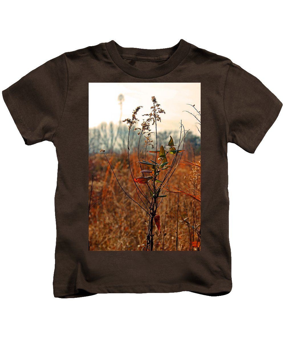 Arboretum Kids T-Shirt featuring the photograph Autumn Grass6277 by Carolyn Stagger Cokley