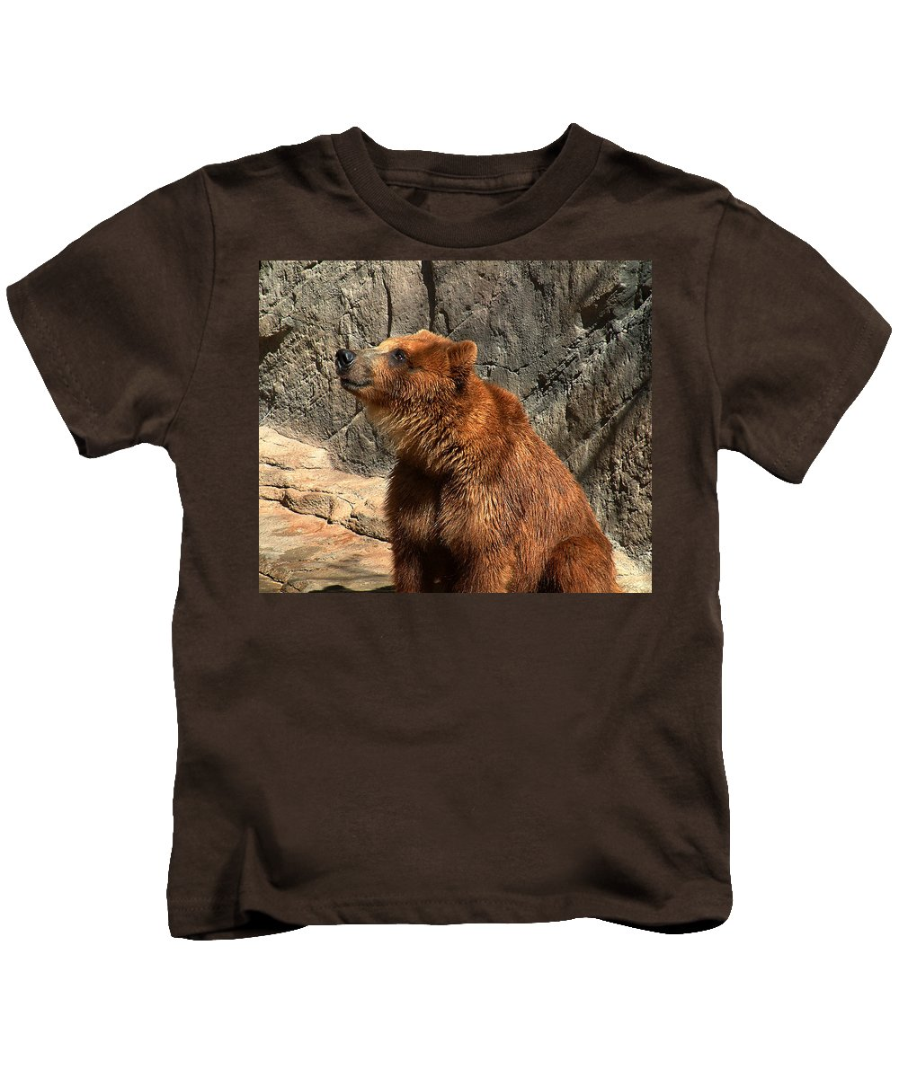 Bear Kids T-Shirt featuring the photograph Watching The Sun Set by RC DeWinter