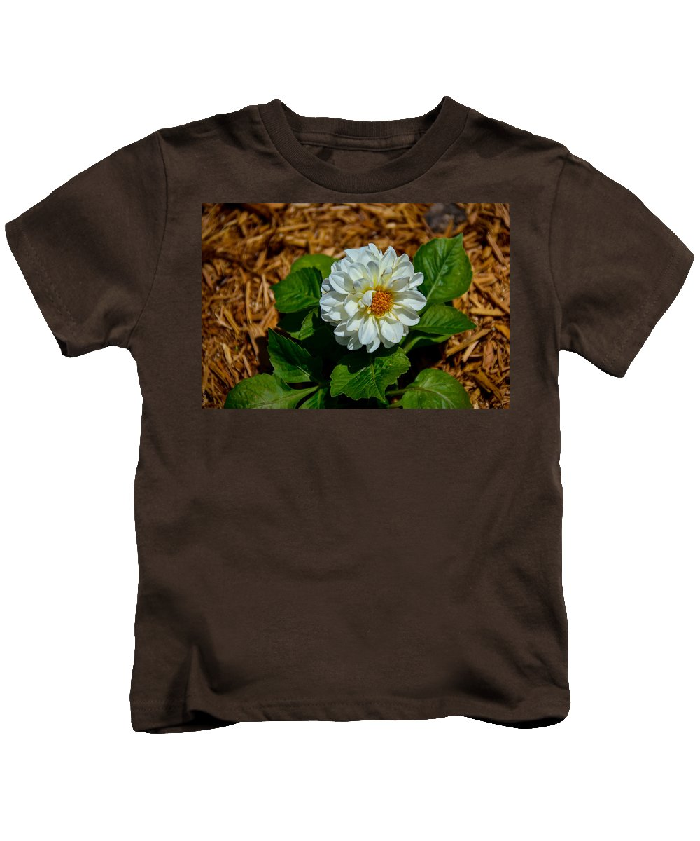 South Dakota Kids T-Shirt featuring the photograph White Green Brown by M Dale