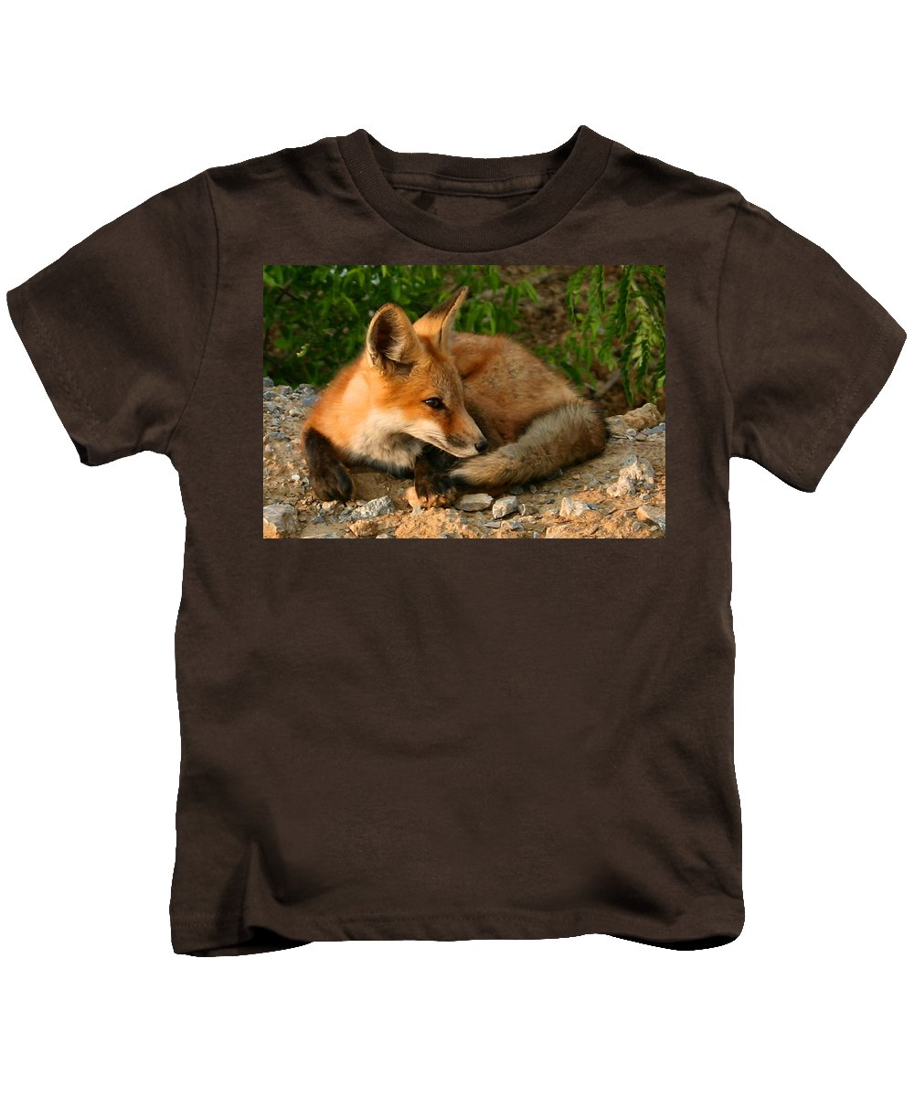 Red Fox Kids T-Shirt featuring the photograph Worn Out From Chasing Squirrels by Kristin Elmquist