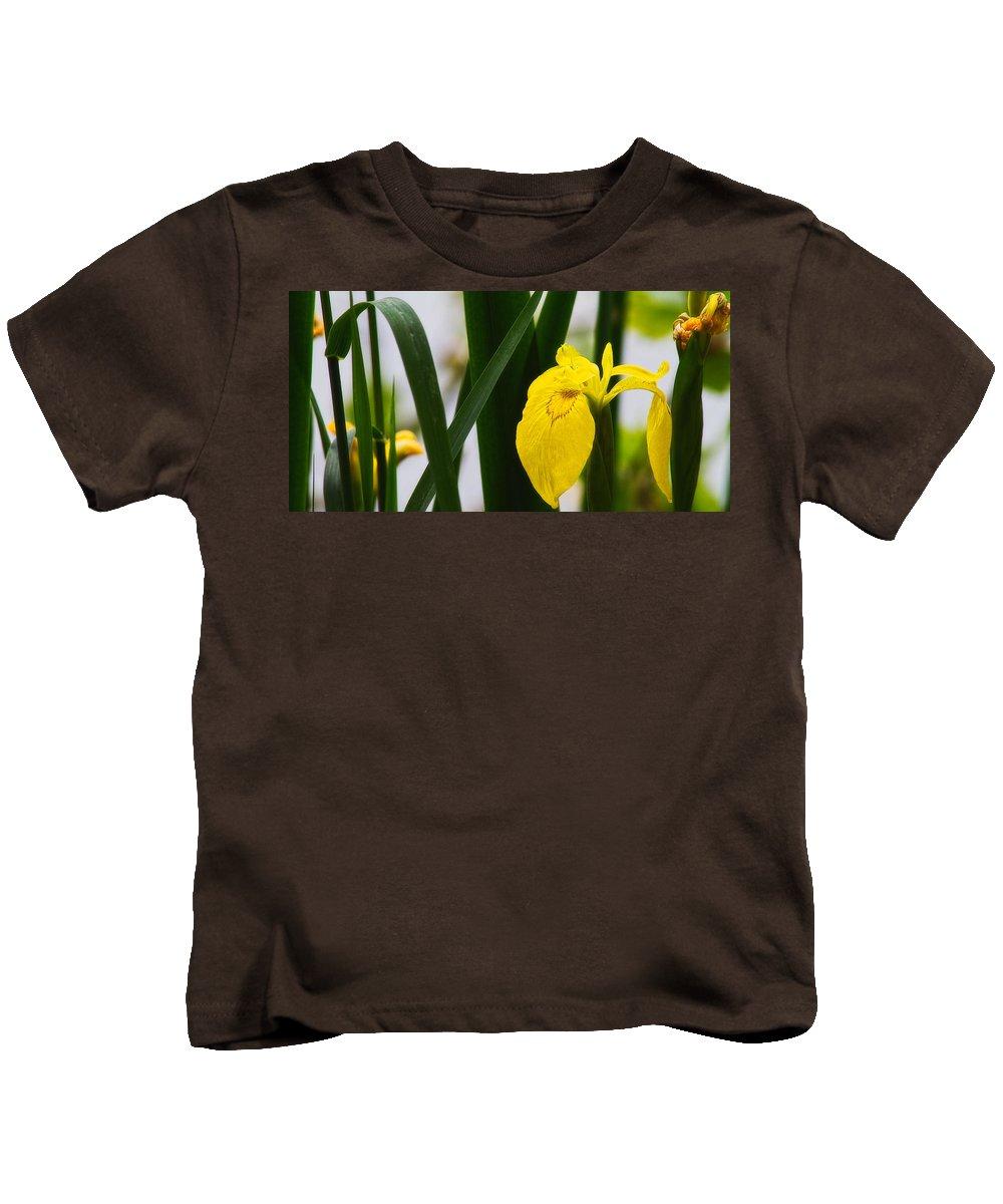 Europe Kids T-Shirt featuring the photograph Yellow Iris by Roberto Pagani