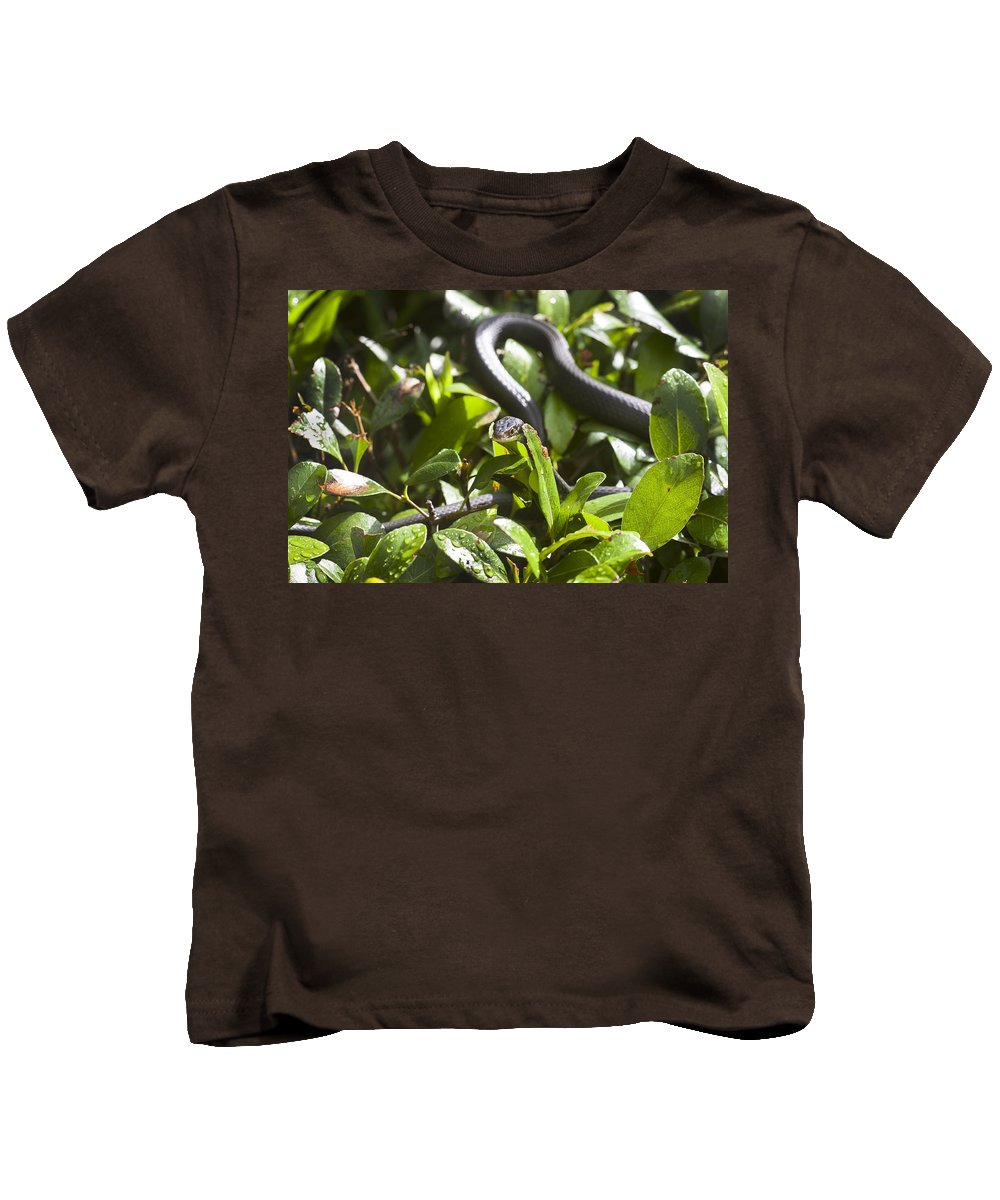 Black Snake Kids T-Shirt featuring the photograph You Lookin At Me by Rich Franco