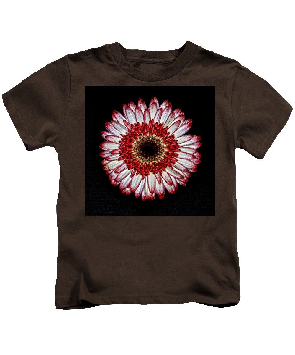 Petals Kids T-Shirt featuring the photograph Zinnia by Hugh Smith