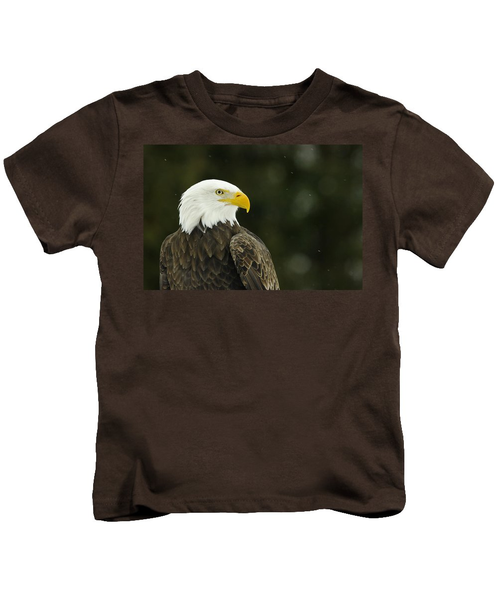 Bird Of Prey Kids T-Shirt featuring the photograph Bald Eagle In Ecomuseum Zoo by Steeve Marcoux