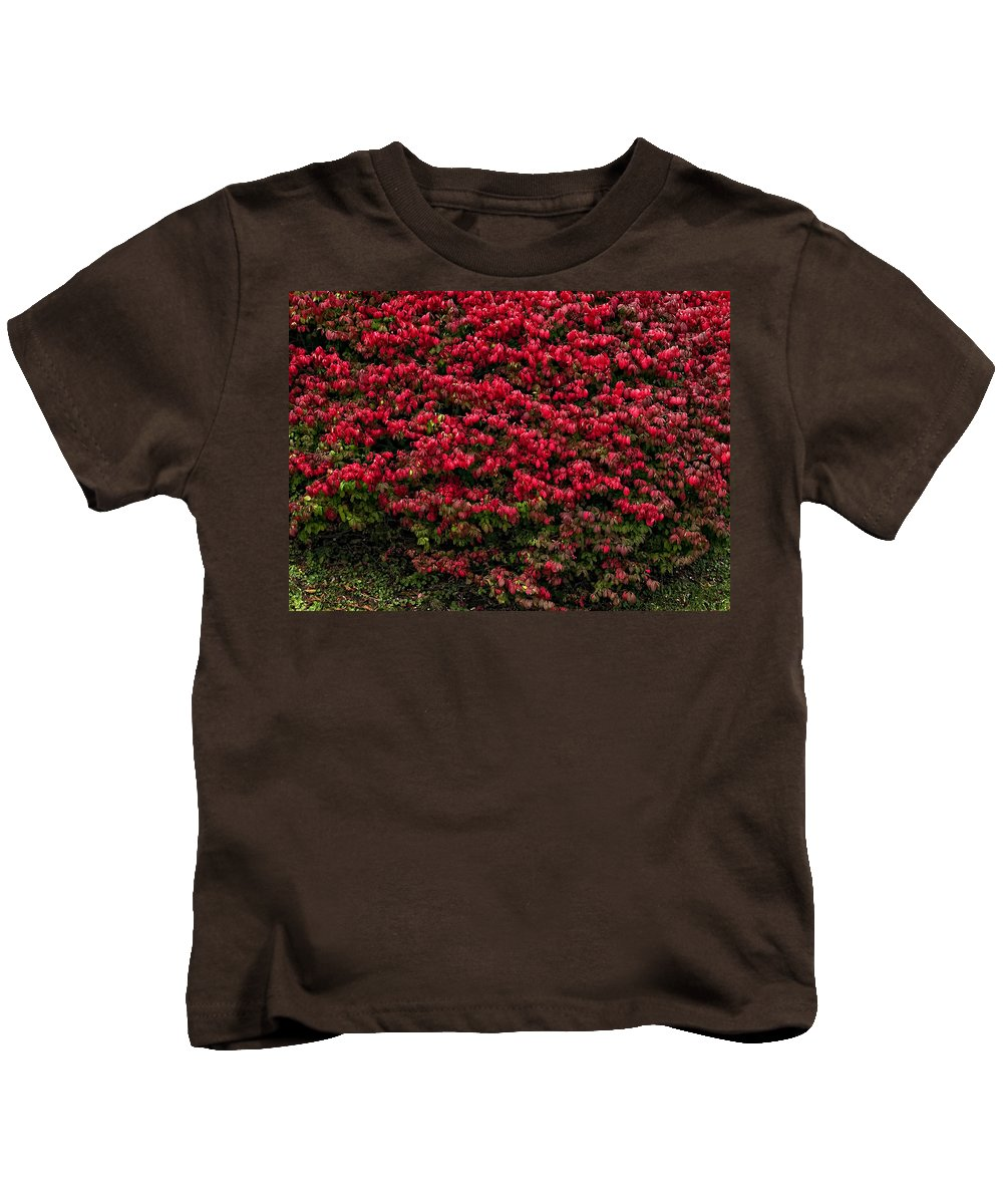 West Virginia Kids T-Shirt featuring the photograph Burning Bush by Steve Harrington