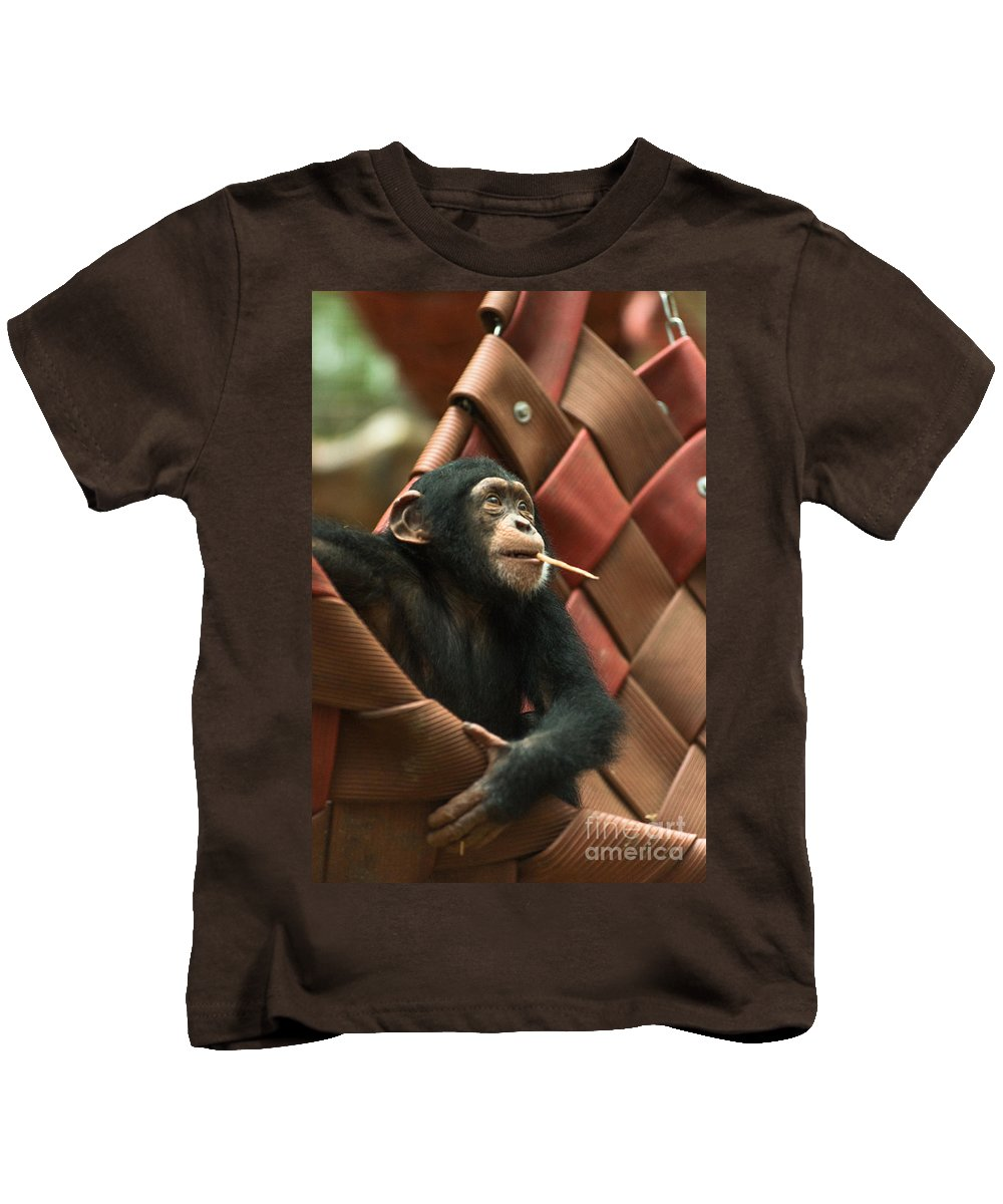 Cheeky Kids T-Shirt featuring the photograph Cheeky Chimp by Andrew Michael