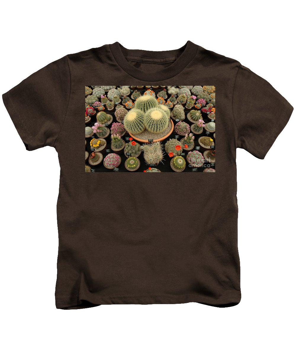 Chelsea Kids T-Shirt featuring the photograph Chelsea Flower Show Cacti Display by Mike Nellums