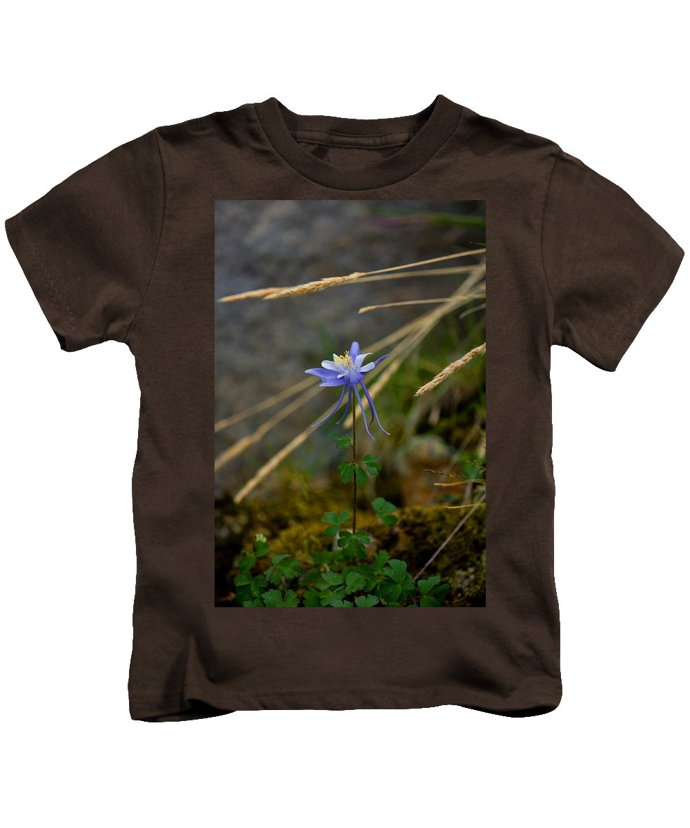 Wildflowers Kids T-Shirt featuring the photograph Columbine Blossom by Rich Franco