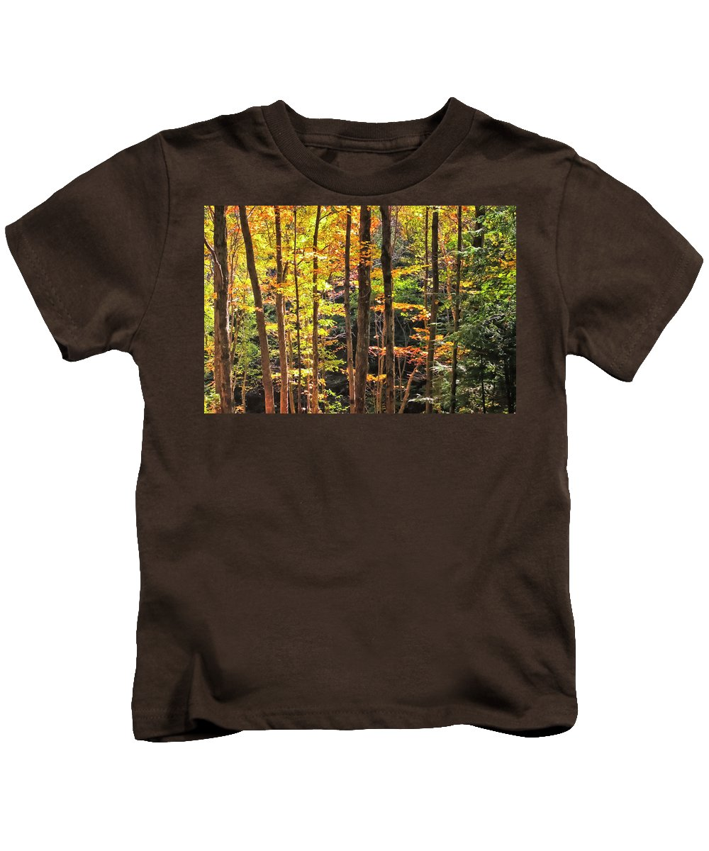 Autumn Color Kids T-Shirt featuring the photograph Dappled Sun On Fall Colors by Albert Seger