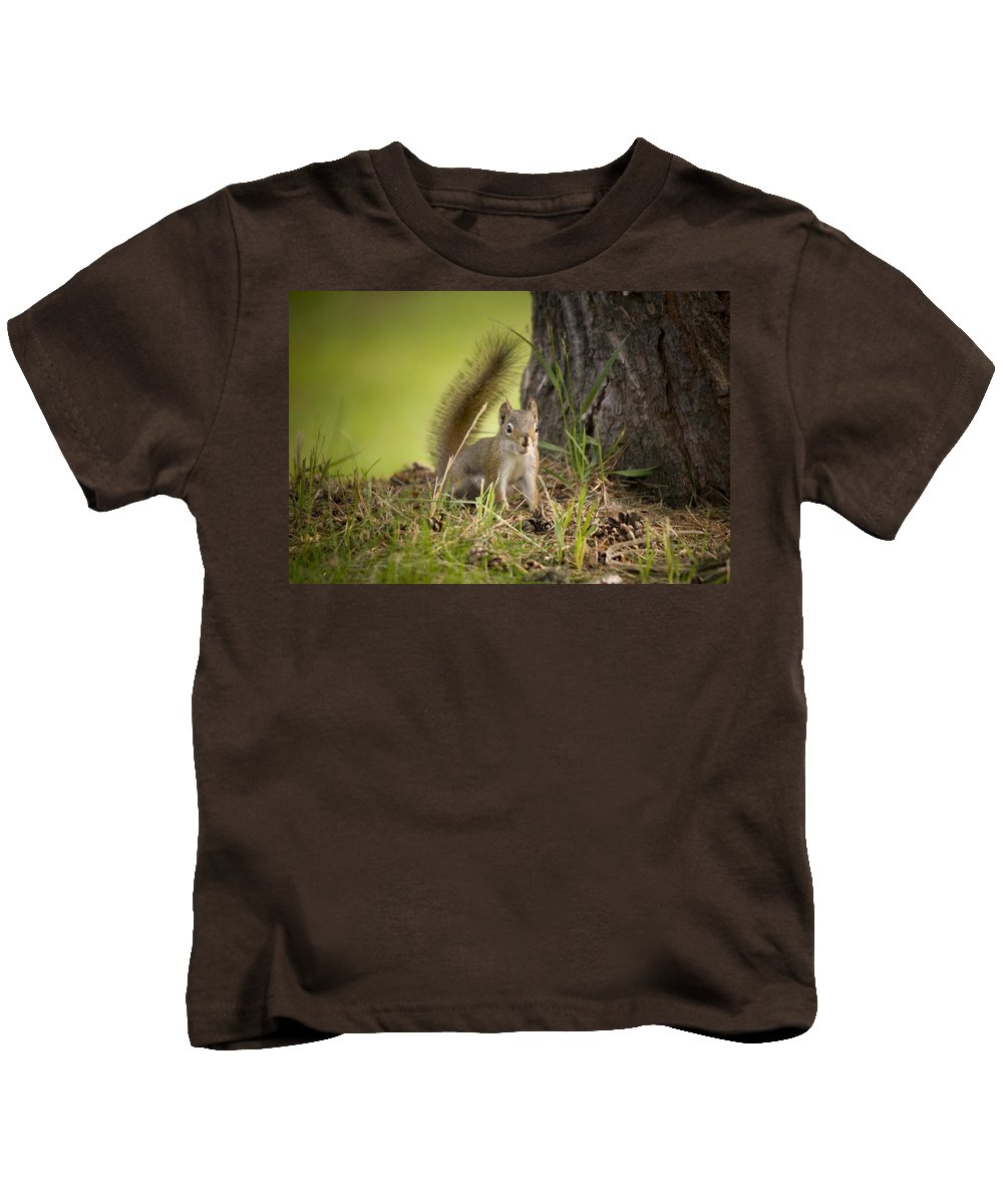 Squirrel Kids T-Shirt featuring the photograph Douglas Squirrel by Martin Cooper