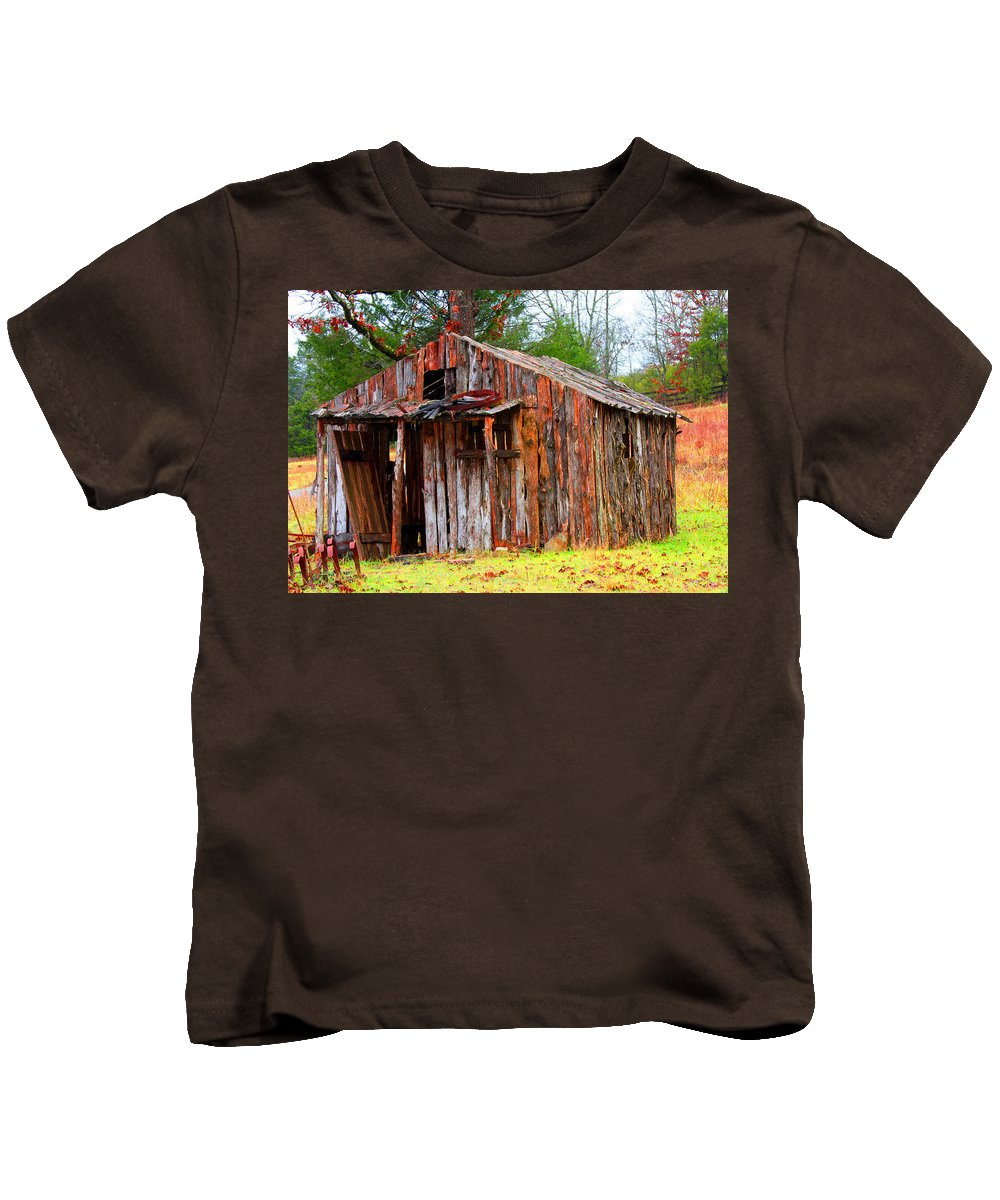 Sheds Kids T-Shirt featuring the photograph Elderly Shed by Marie Jamieson