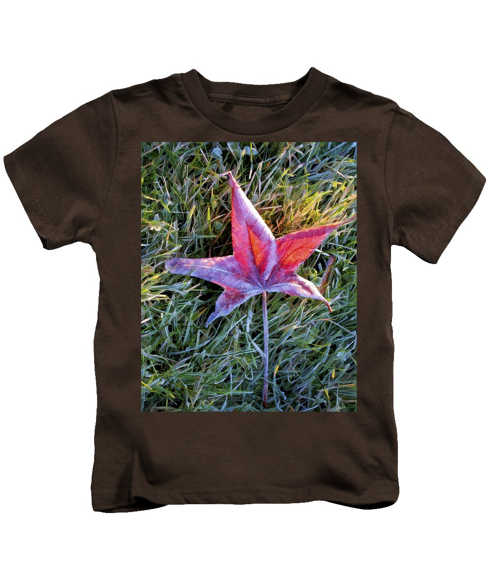 Art Kids T-Shirt featuring the photograph Fallen Autumn Leaf In The Grass During Morning Frost by Randall Nyhof