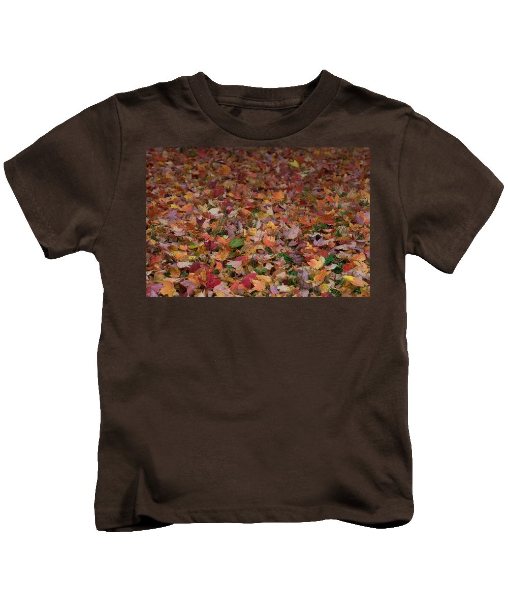 Fall Kids T-Shirt featuring the photograph Falling Leaves by Trish Tritz