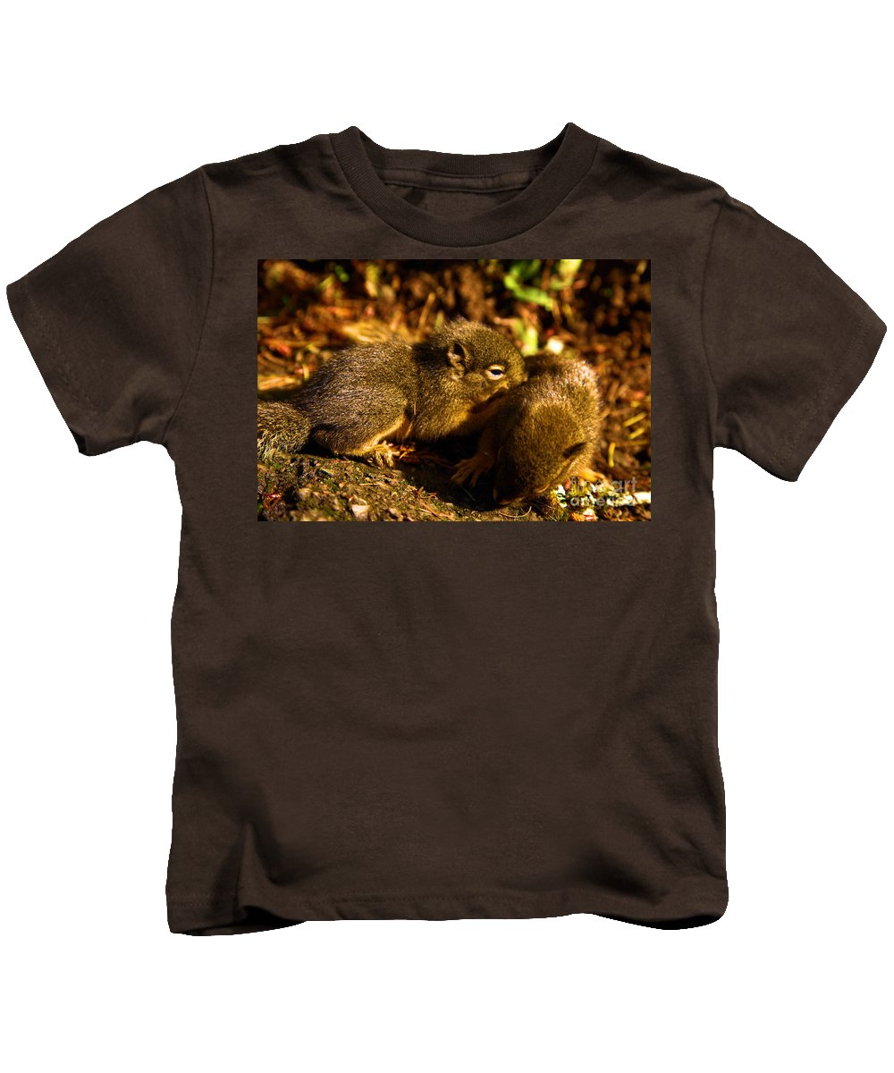 Douglas Squirrels Kids T-Shirt featuring the photograph Finding Our Way by Adam Jewell