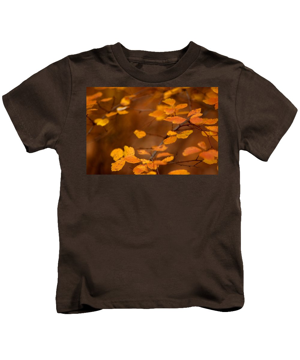 Usa Kids T-Shirt featuring the photograph Floating On Orange Fall Leaves by LeeAnn McLaneGoetz McLaneGoetzStudioLLCcom