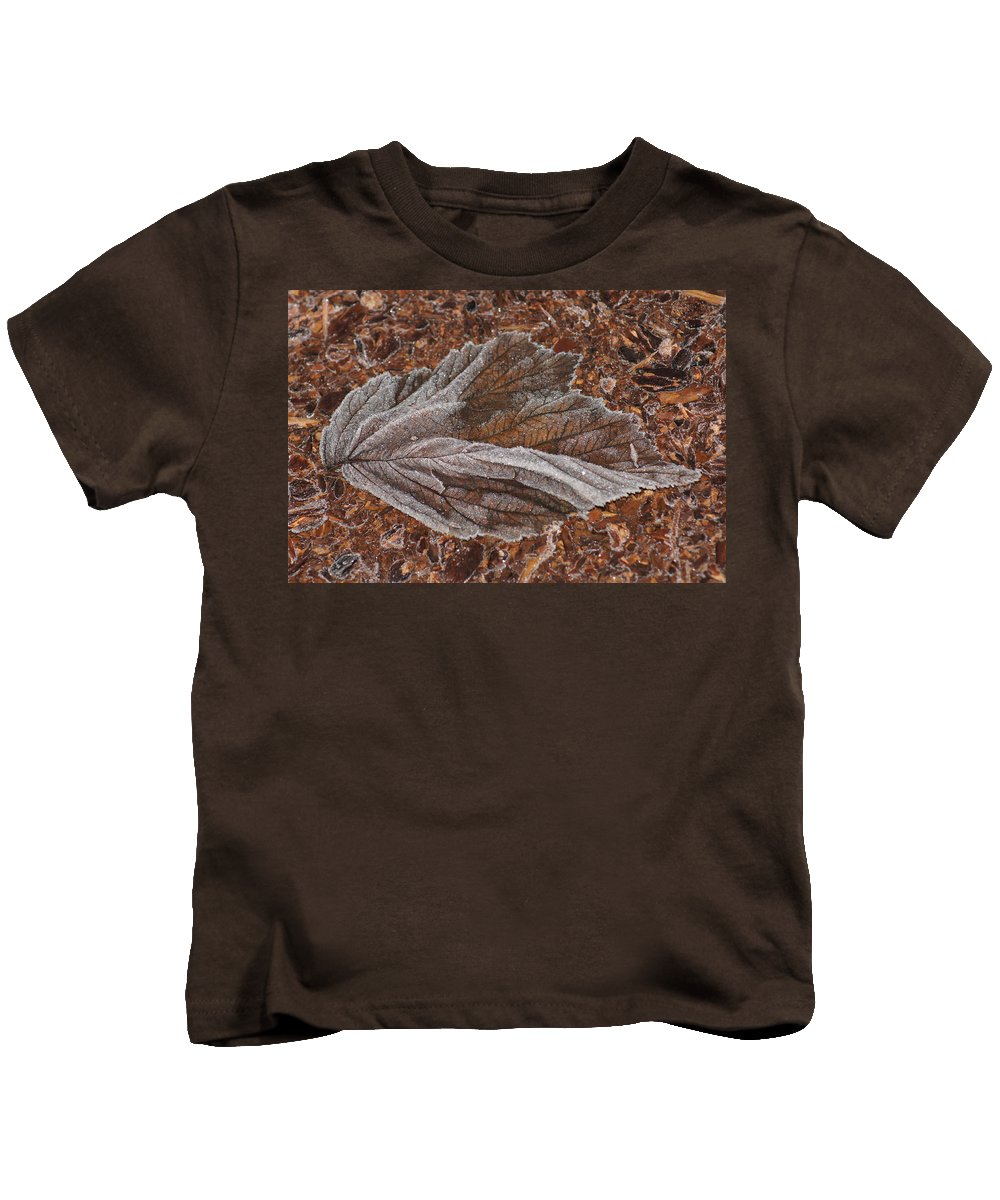 Frost Kids T-Shirt featuring the photograph Frosted Raspberry Leaf by Shirley Heyn