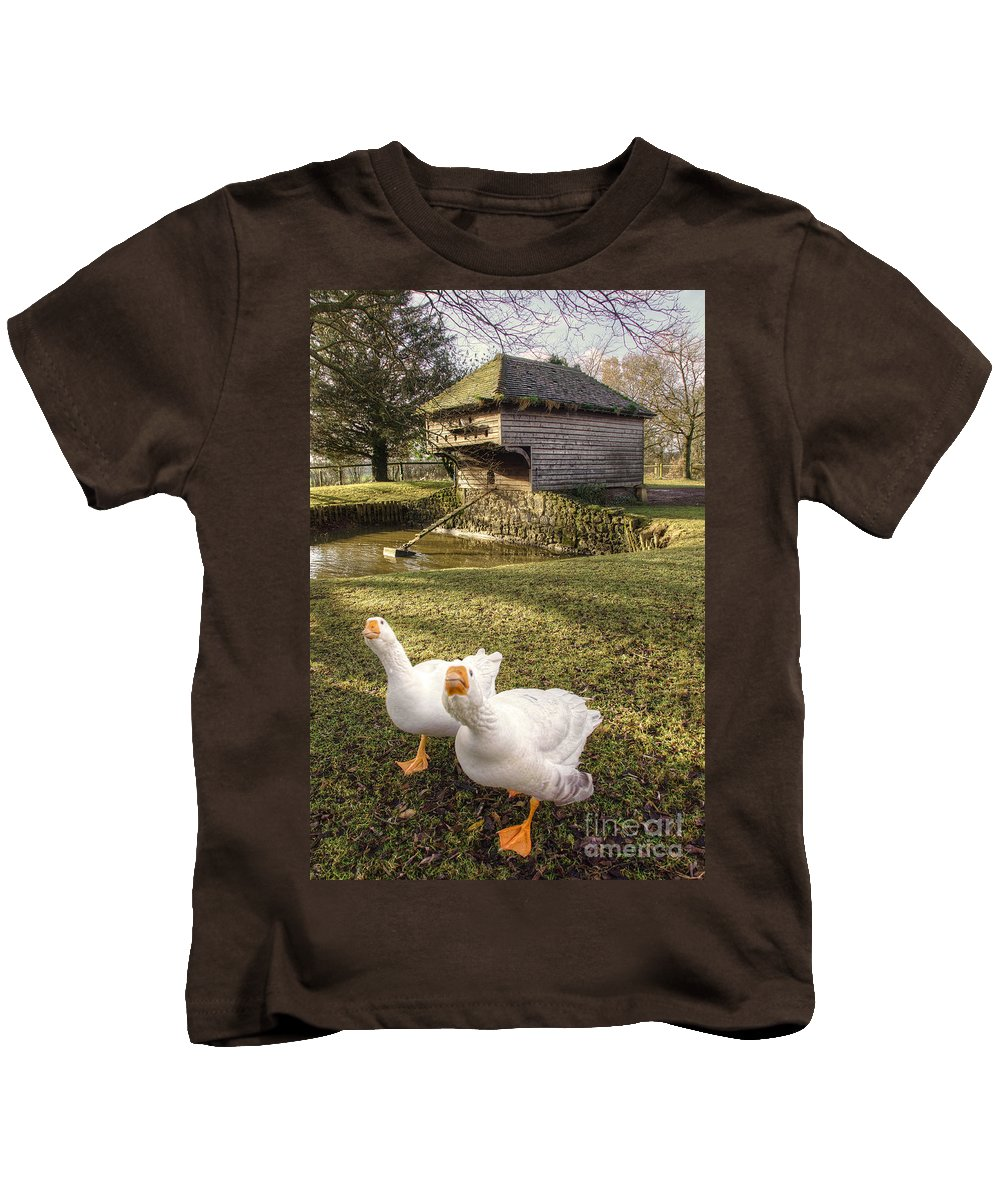 Goose Kids T-Shirt featuring the photograph Goosey Goosey by Rob Hawkins