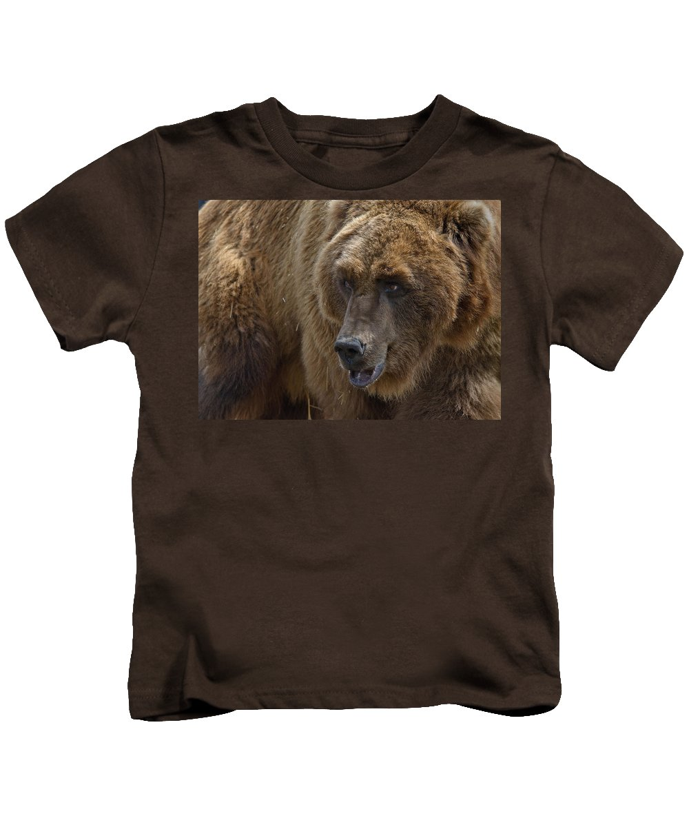Grizzly Kids T-Shirt featuring the photograph Griz Portrait by Greg Nyquist