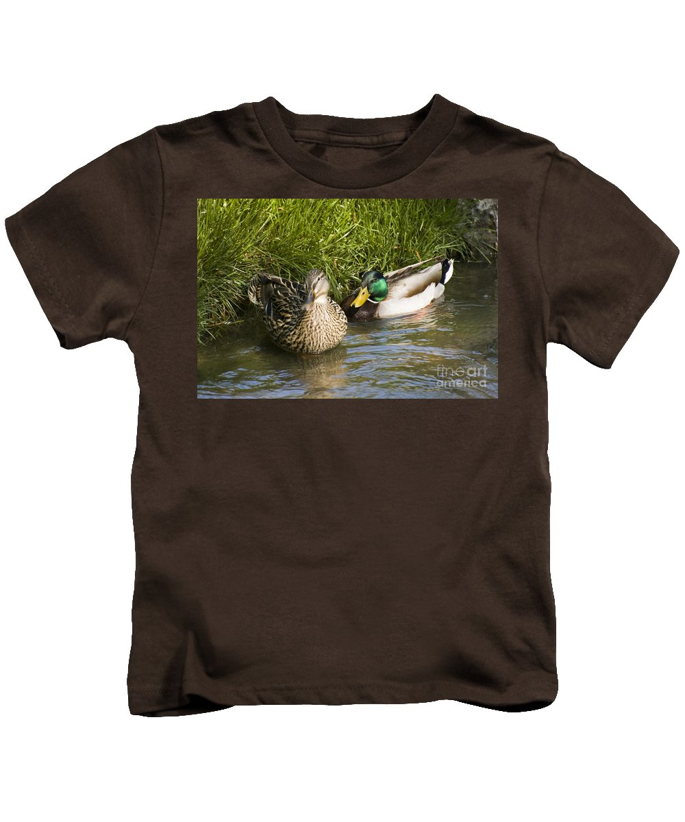 Mallard Kids T-Shirt featuring the photograph Mallards Nesting by Tim Mulina