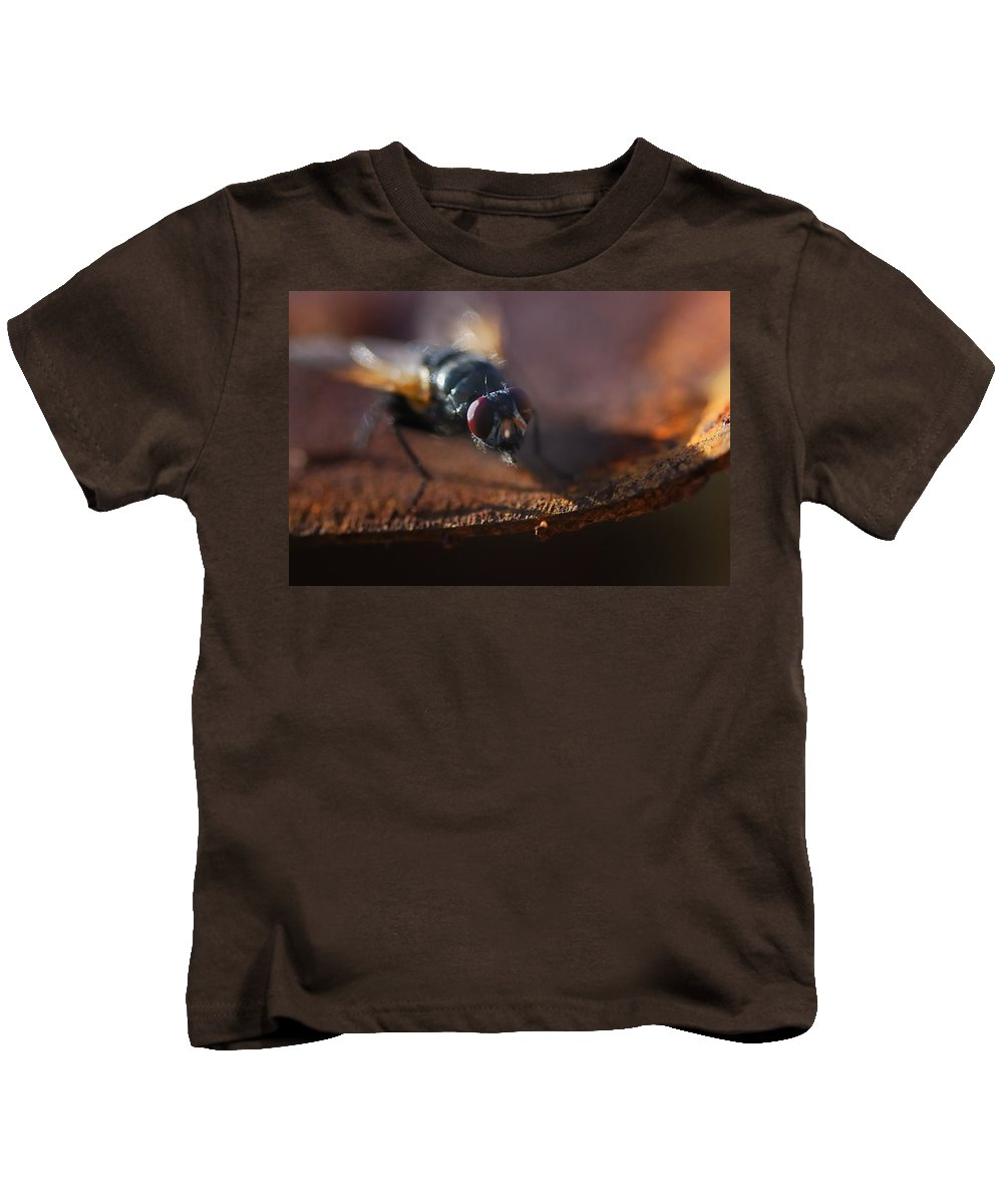 Nature Kids T-Shirt featuring the photograph My My My Little Fly by Susan Capuano