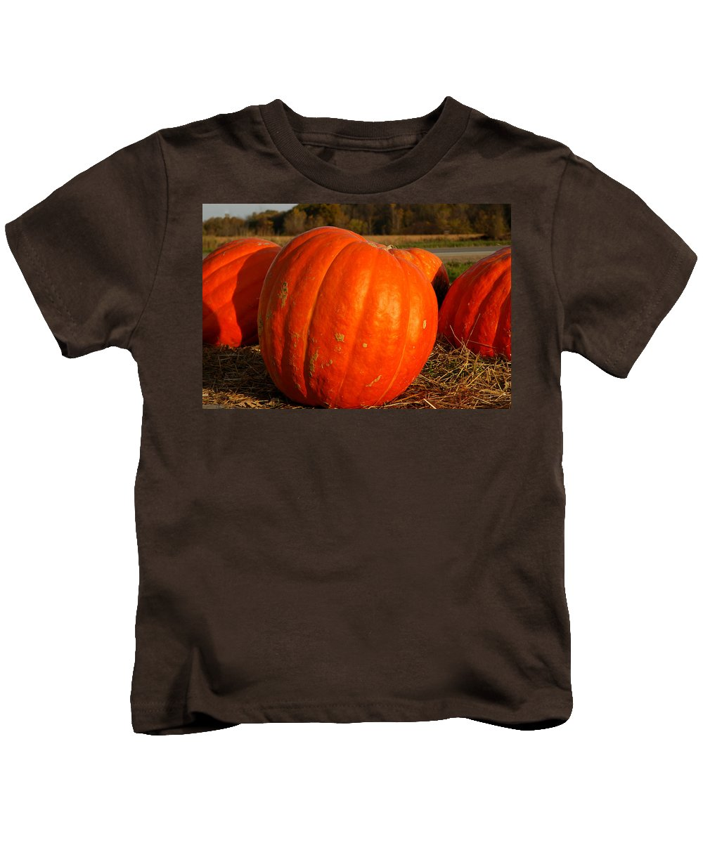 Food And Beverage Kids T-Shirt featuring the photograph Pumpkin Hay Ride by LeeAnn McLaneGoetz McLaneGoetzStudioLLCcom