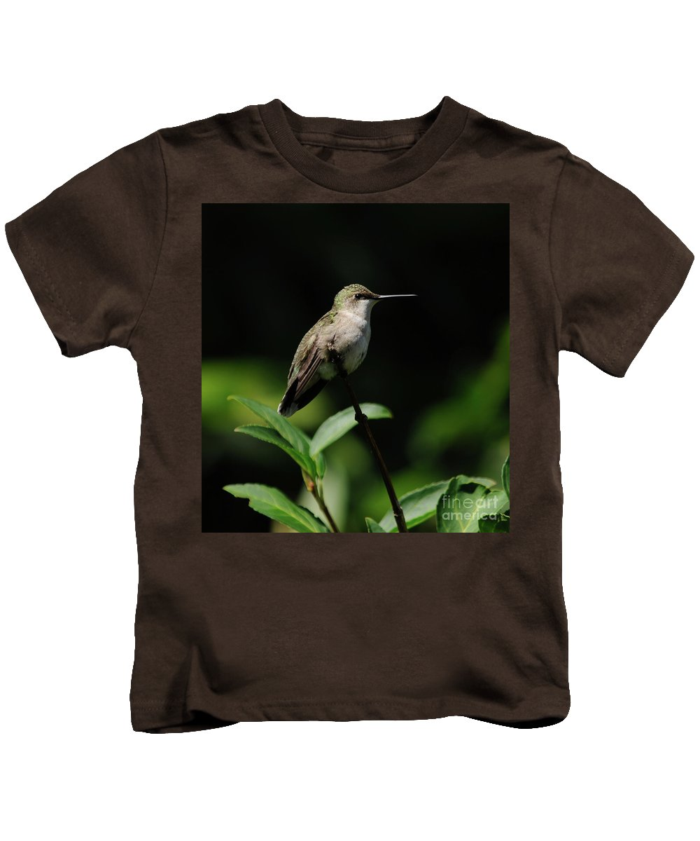Green Kids T-Shirt featuring the photograph Ruby-throated Hummingbird Female by Ronald Grogan