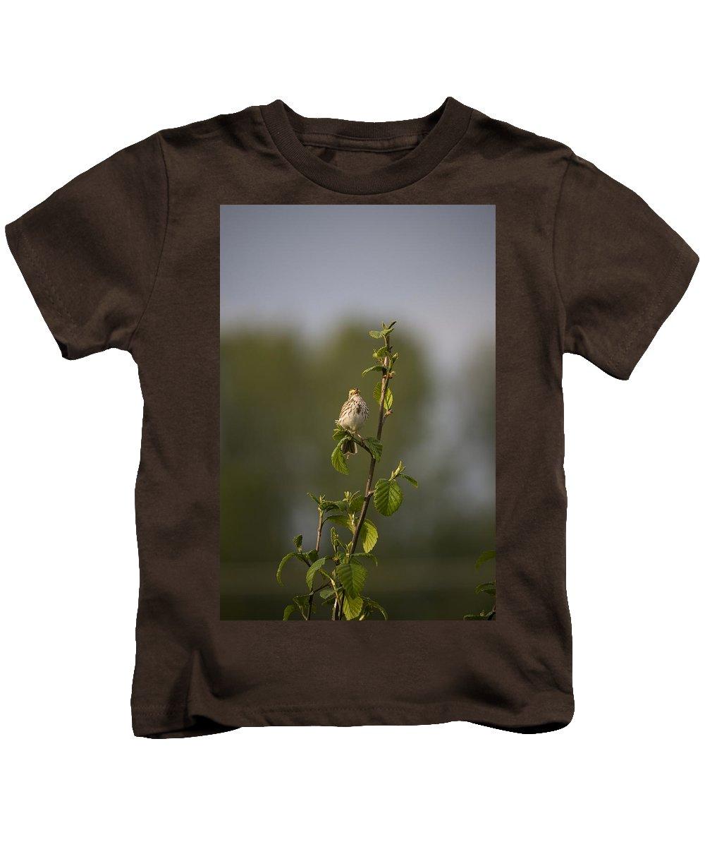 Savannah Sparrow Kids T-Shirt featuring the photograph Savannah Sparrow by Martin Cooper