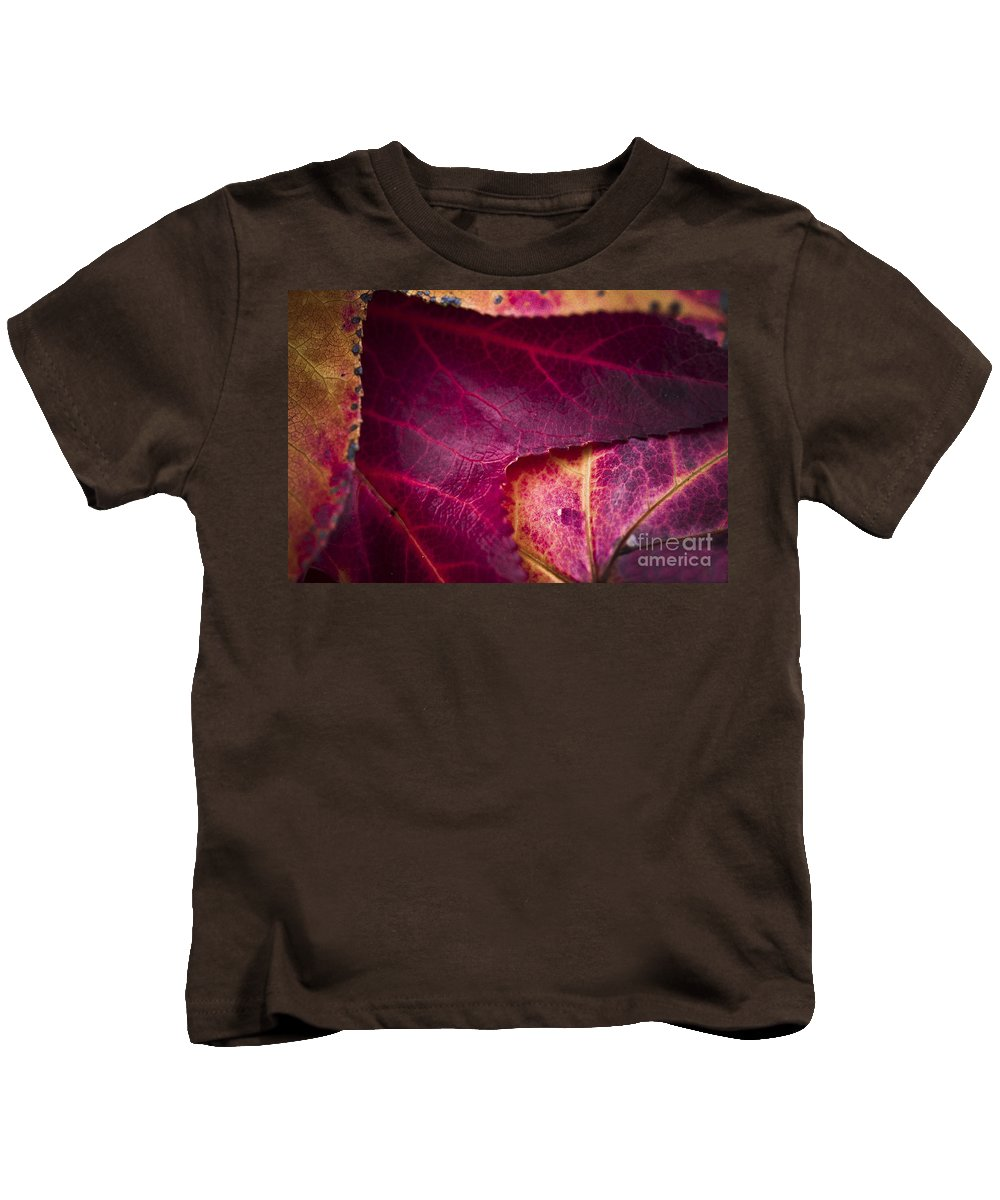 Fall Leaves Kids T-Shirt featuring the photograph Textured Layers by Kim Henderson