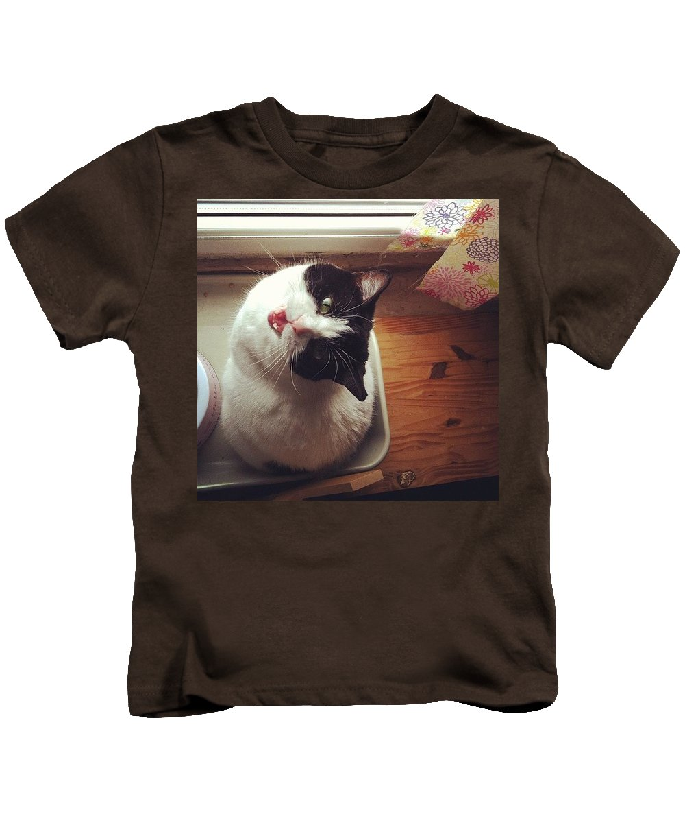 Catsofinstagram Kids T-Shirt featuring the photograph the Bowl's Empty! #cat by Katie Cupcakes