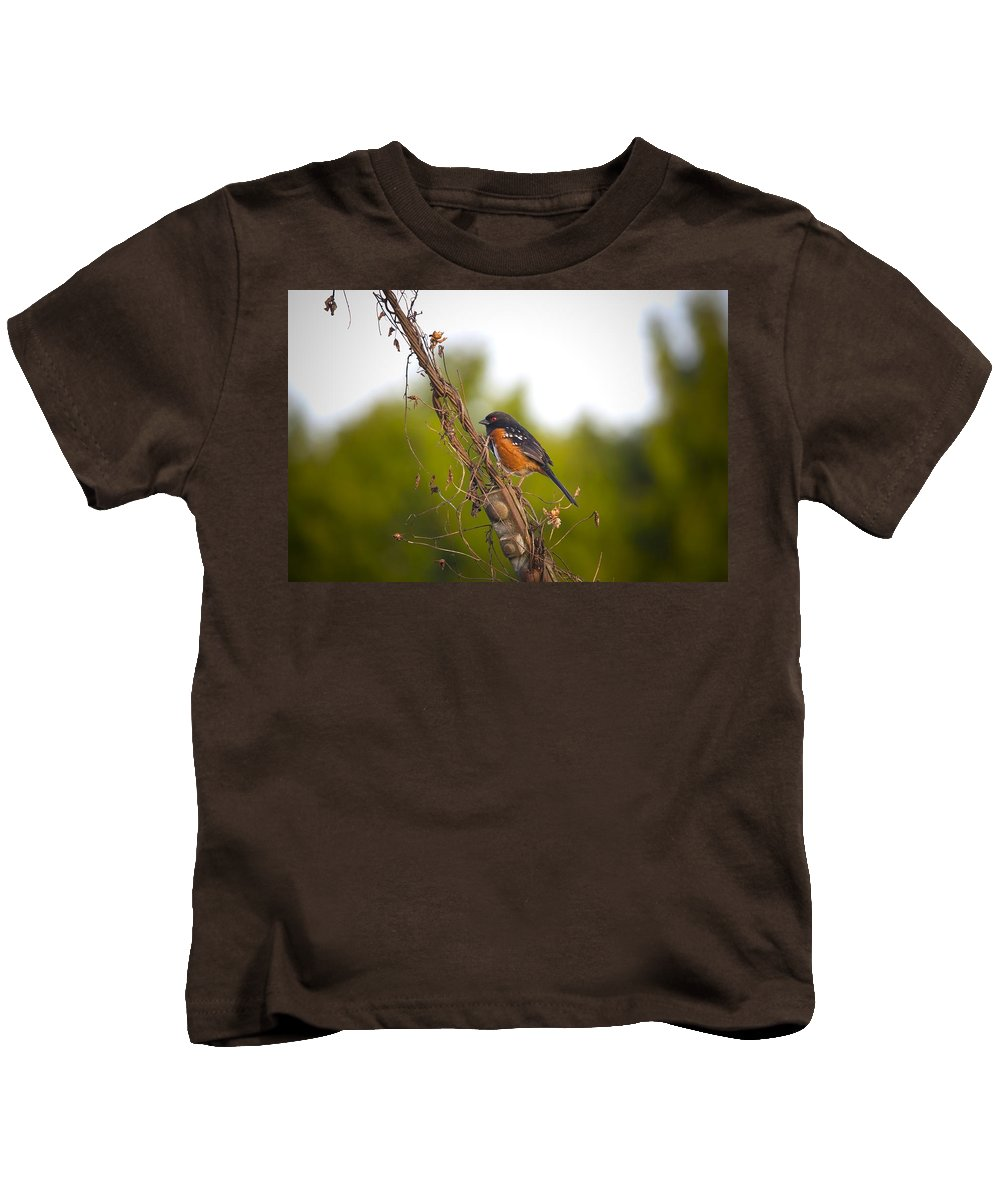 Towhee Kids T-Shirt featuring the photograph Towhee 2 by Martin Cooper