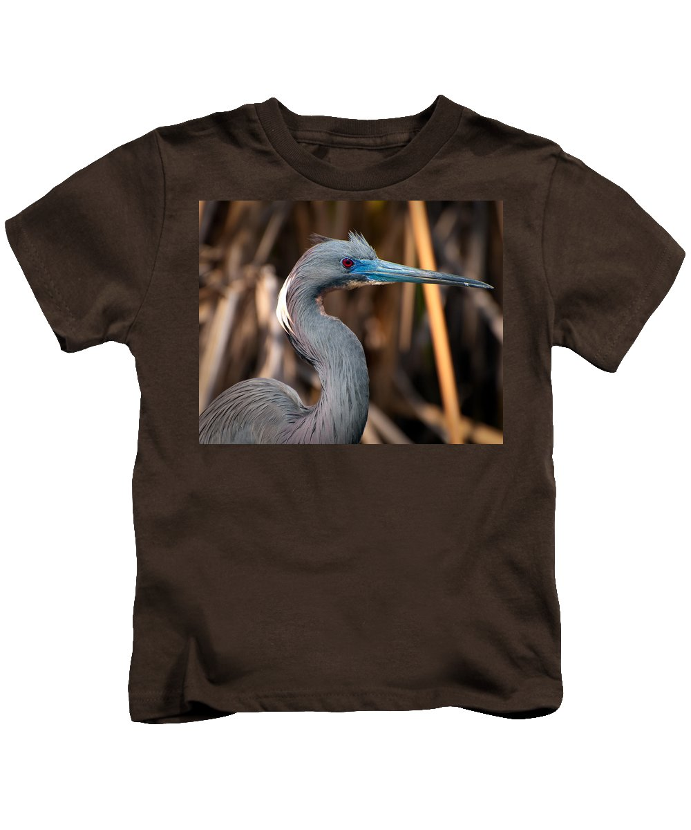 Animal Kids T-Shirt featuring the photograph Tricolored Heron In Breeding Plumage by Rich Leighton