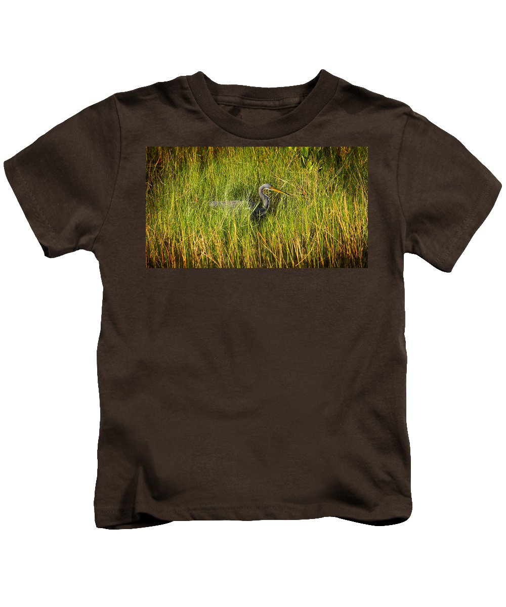 Wetlands Kids T-Shirt featuring the photograph Tricolored Heron by Rich Franco
