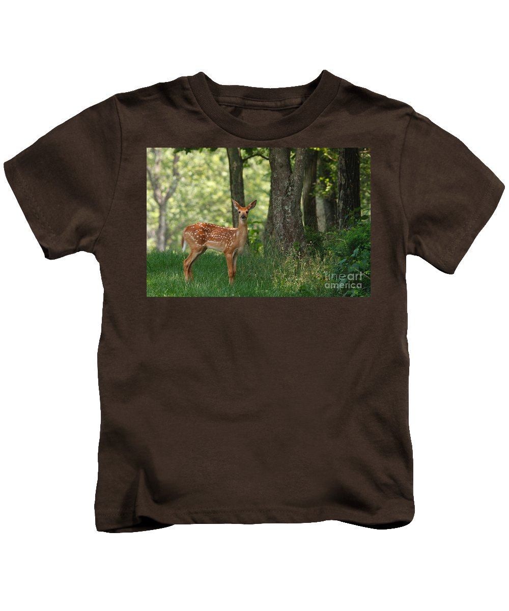 Whitetail Fawn Kids T-Shirt featuring the photograph Whitetail Deer Fawn by Joe Elliott