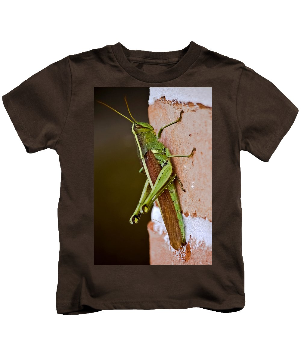 Grasshopper Kids T-Shirt featuring the photograph Wings In Brown by DigiArt Diaries by Vicky B Fuller