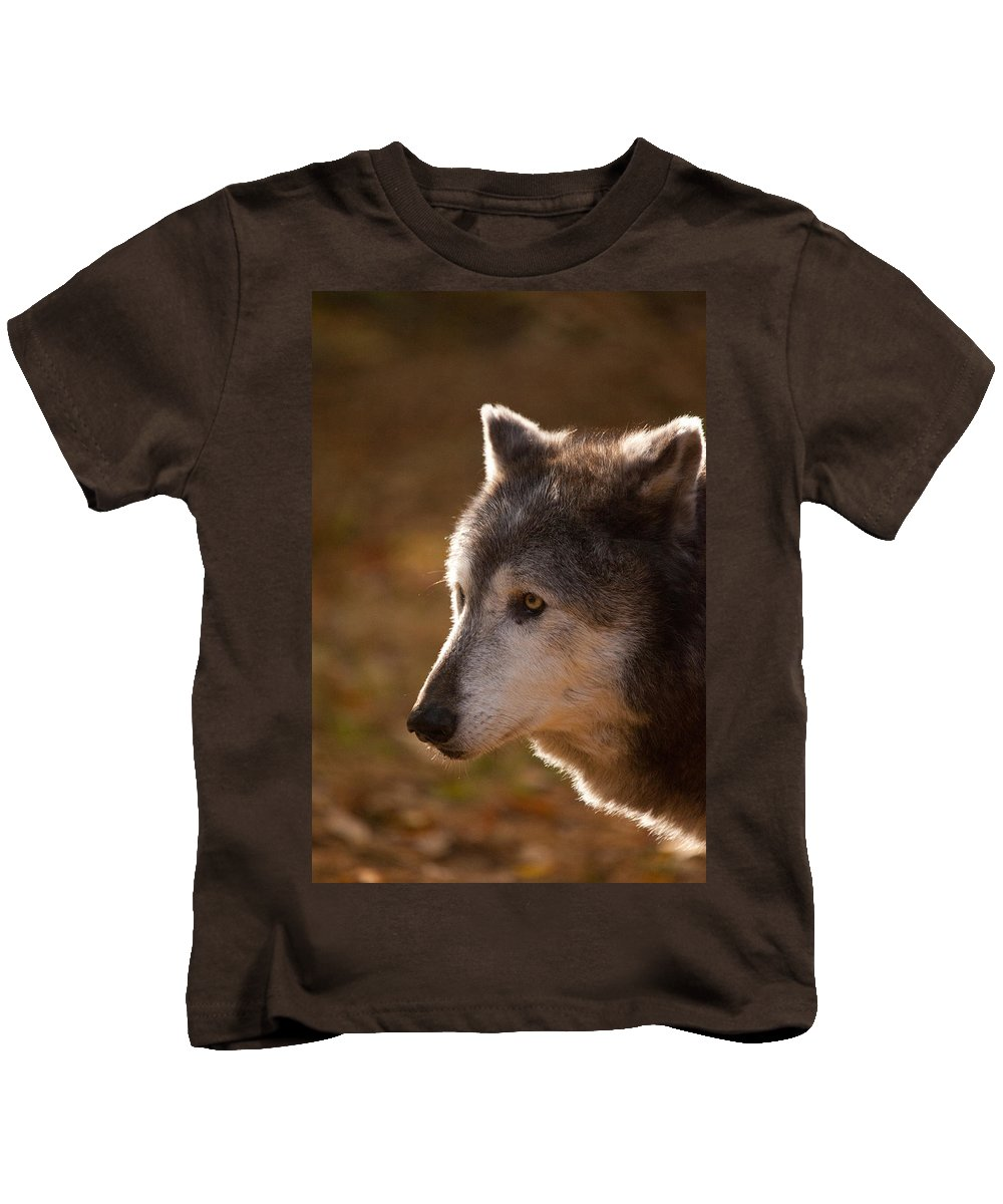 Wolf Kids T-Shirt featuring the photograph Wolf Outlined By The Sun by Karol Livote
