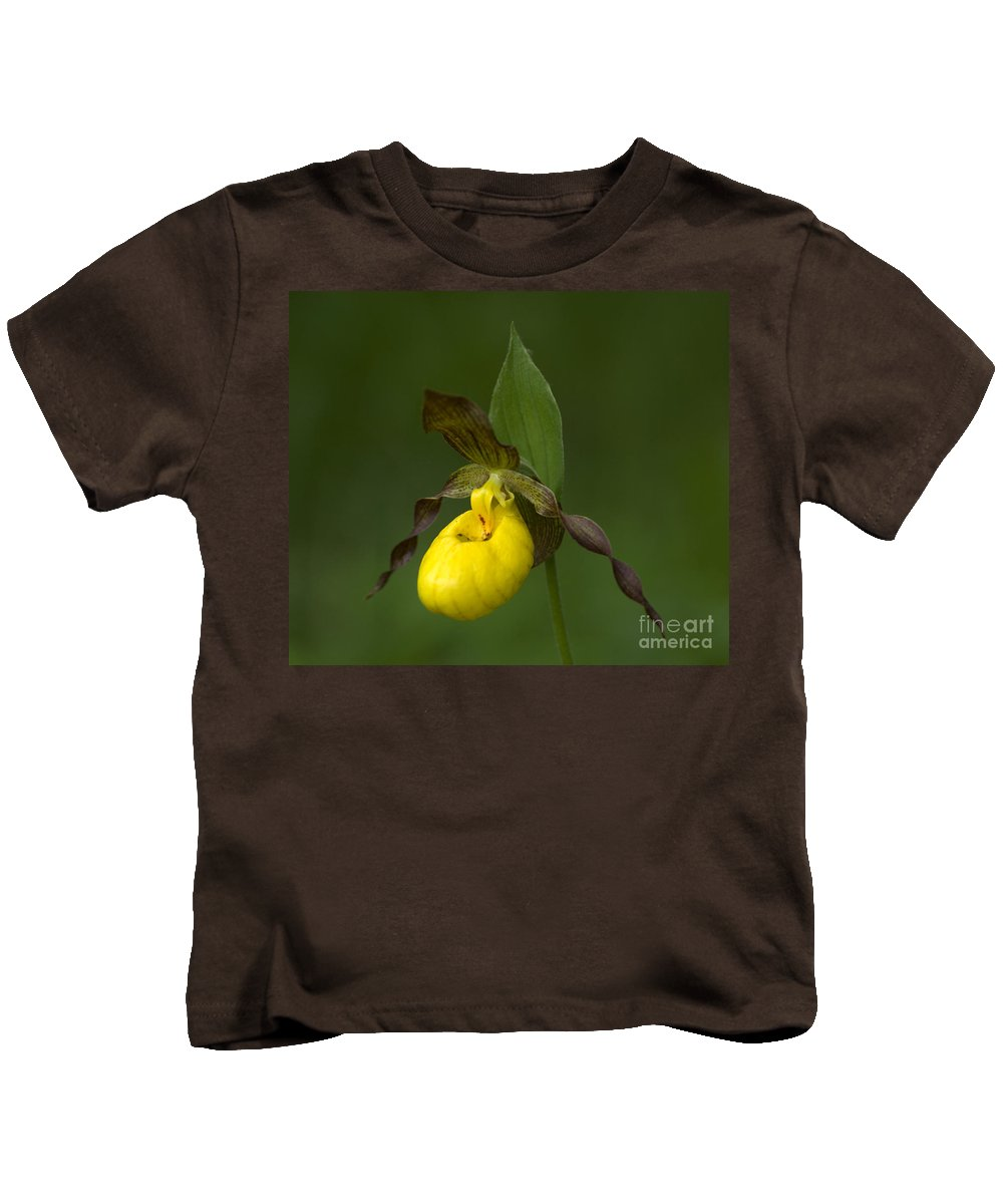Ladys Slipper Kids T-Shirt featuring the photograph Yellow Lady's Slipper by Bob Christopher