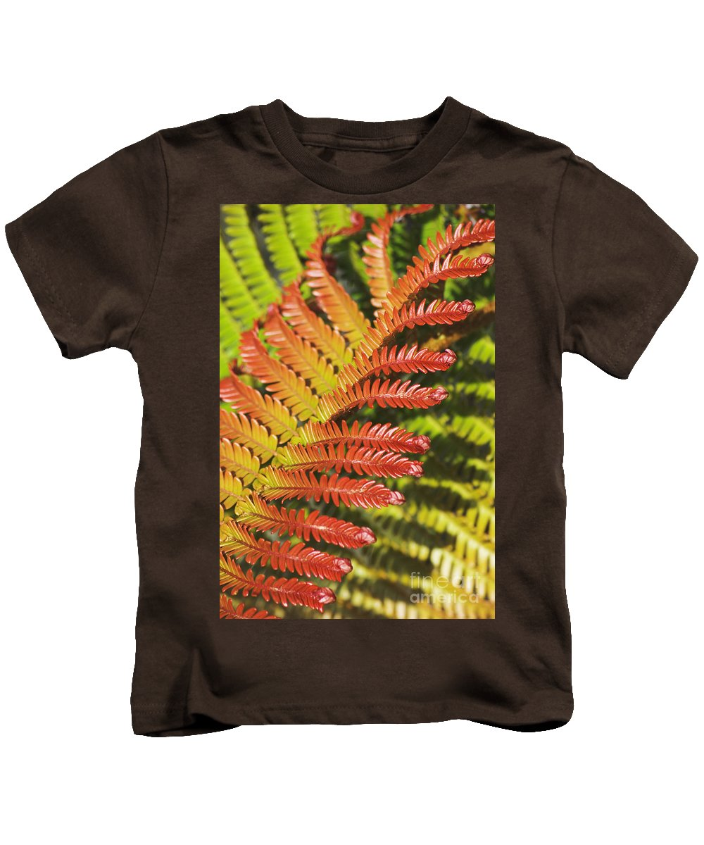 Abstract Kids T-Shirt featuring the photograph Amaumau Fern Frond by Greg Vaughn - Printscapes