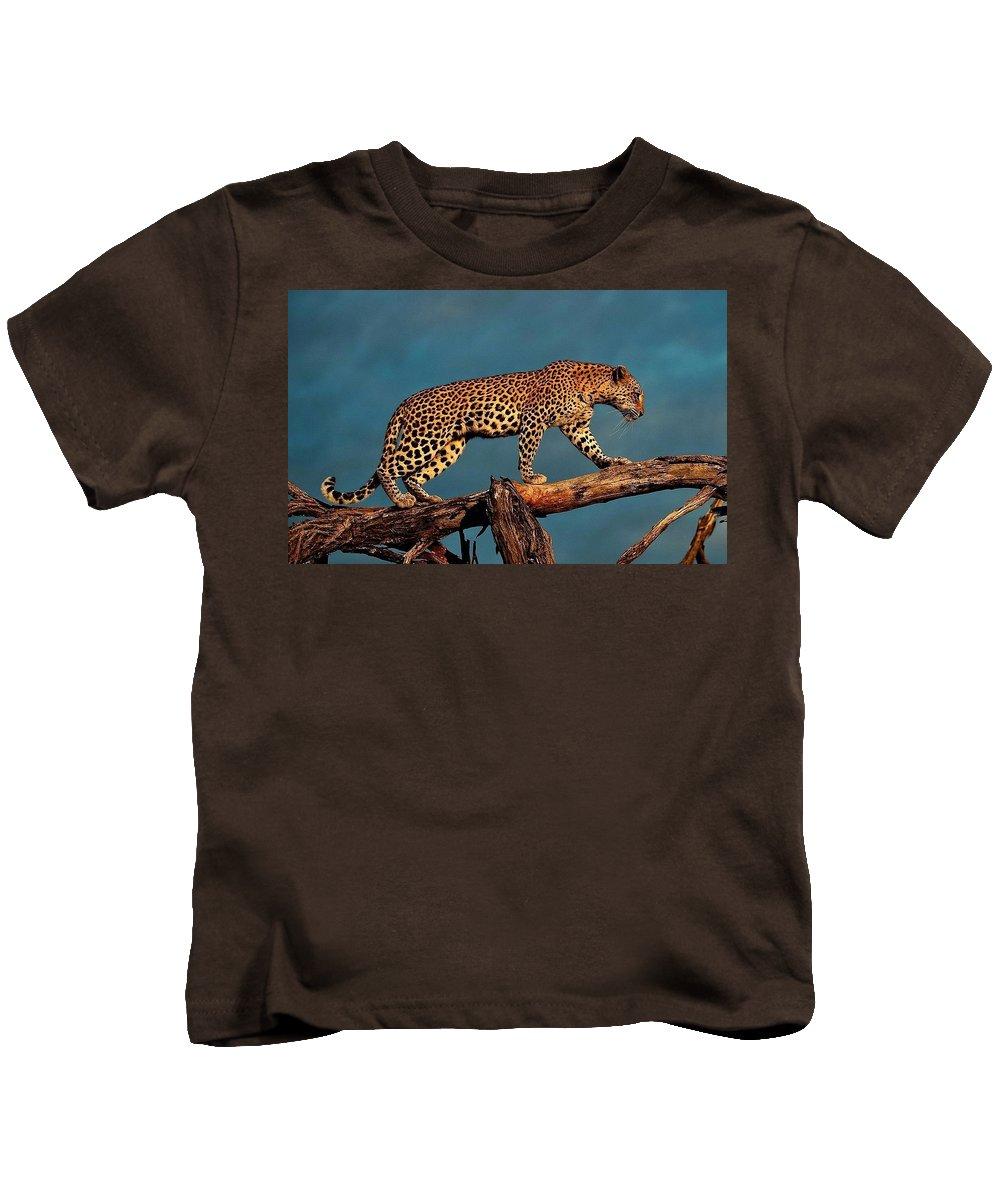 Leopard Kids T-Shirt featuring the digital art Leopard by Dorothy Binder