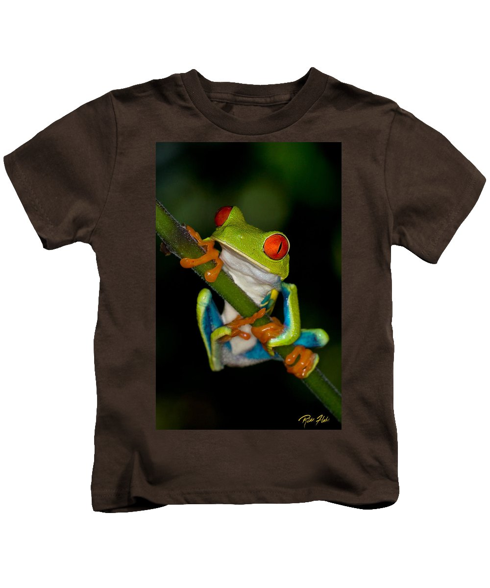 Animals Kids T-Shirt featuring the photograph Red-eyed Green Tree Frog Hanging On by Rikk Flohr